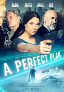 A Perfect Plan 2020 Online Subtitrat